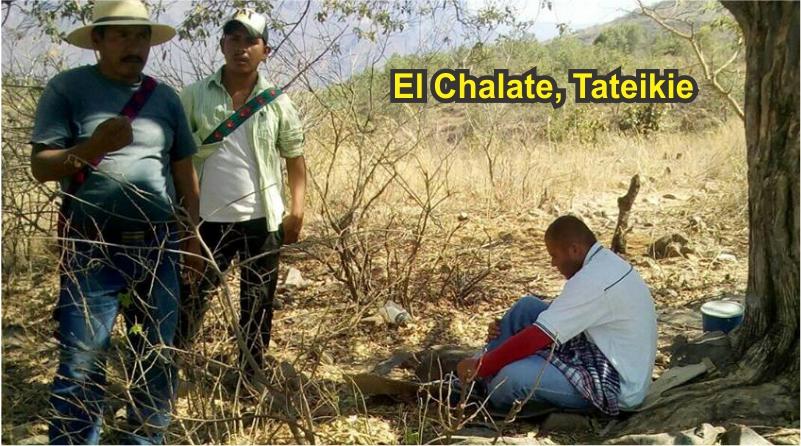 Hallan a mestizo con dificultades mentales en comunidad wixárika de Tateikie
